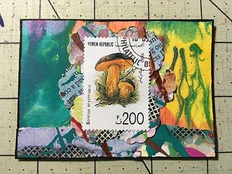 JAN202_TexturedUndergrowth
