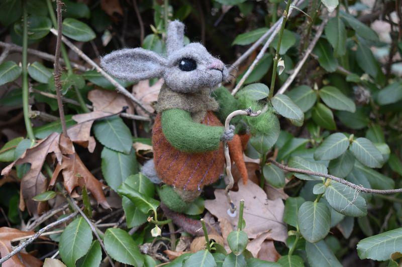 rabbit 1 SM