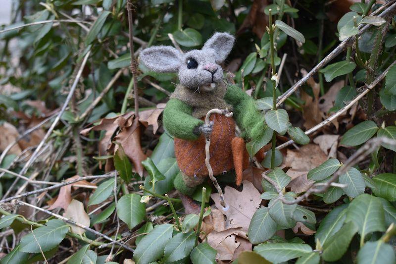 rabbit 2 SM